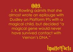 Harry Potter Facts Dudley Dursley