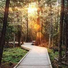 13 Most Incredible Hikes In Manitoba You Have To Do Once In Your Life - Narcity Places To Travel, Places To See, Travel Destinations, Canadian Travel, Camping Checklist, Hiking Tips, Best Hikes, Day Hike, Bike Trails