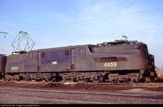 High quality photograph of Conrail (electric) # CR 4859 at Kearny, New Jersey, USA. Electric Train, Electric Power, Funny Cat Photos, Funny Cats, Train Engines, Electric Locomotive, Buses, New Jersey, Pennsylvania