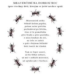 mravenčení na dobrou noc