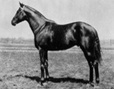 Flying Ebony. 1925 Kentucky Derby winner; first time the race was ever broadcast on radio. Jockey: Earl Sande. Winning time: 2:07 3/5