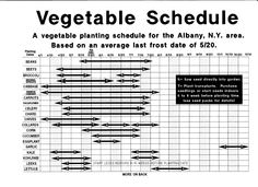 Vegetable Planting Schedule for upstate New York