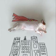 Eigentlich arbeite der Hunde-Künstler für ein Gastronomie-Magazin, berichtet #link;http://www.anothermag.com/current/view/3861/Rafael_Mantessos_Bull_Terrier;'AnotherMag'#.