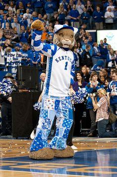 Kentucky Wildcats Basketball Mascot | uk espn college gameday 83