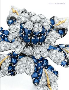A DIAMOND AND SAPPHIRE BROOCH BY JEAN SCHLUMBERGER, TIFFANY CO Elizabeth Taylor's Jewelry