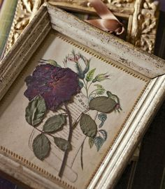 pressed flower tutorial... love the book print background