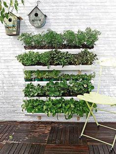 Compartimos un paso a paso sencillo para realizar tu propio jardín vertical Materiales necesarios: 4 m de canalón o conducto de plástico; 10 soportes para el canalón y 10 tapas; Una...