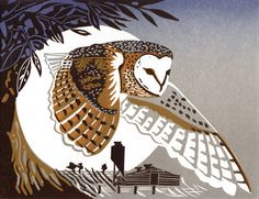 Barn Owl - http://www.pamgrimmond.co.uk/