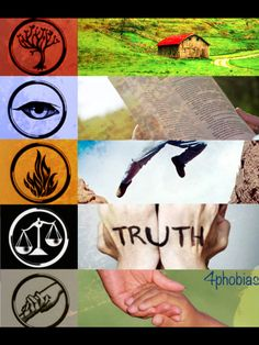 Divergent I think I'd be amity or candor but I like to picture myself in dauntless even though I wouldn't last 2 seconds
