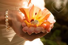 Wedding ring photography #Engagement #Wedding #Rings … #Wedding #ideas for brides, grooms, parents & planners https://itunes.apple.com/us/app/the-gold-wedding-planner/id498112599?ls=1=8 … plus how to organise an entire wedding, within ANY budget ♥ The Gold Wedding Planner iPhone #App ♥ For more inspiration http://pinterest.com/groomsandbrides/boards/  #engagement #ceremony #reception