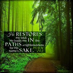 He restores my soul; He leads me in the paths of righteousness for His name's sake. Psa 23:3 <3
