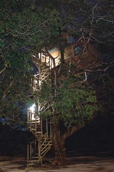 Credit: D Donne/Bryant Stock Photographic Agency West Bay Treehouse, Roatan, Honduras: High in the thick foliage of a century-old mango tree...