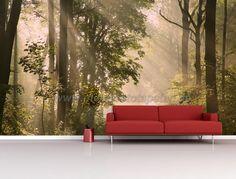 Fototapete Poster Aufkleber - Wald Bäume und Sonnenuntergang im Wohnzimmer