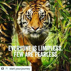 #Repost @start.your.journey with @repostapp  We are all born with no limits imposed on us. As we grow we allow other peoples limits to become our own. It takes true courage to build up the strength to bust through those limits. Like if you agree  #startyourjourney  #amazing #beautiful #bestoftheday #boss #business #entrepreneur #freedom #friend #goals #happy #inspiration #instadaily #instagood #life #love #mindset #money #motivation #quote #quoteofheday #quotes #smile #success #wealth #work