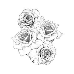 To Taste Your Beating Heart ❤ liked on Polyvore featuring fillers, flowers, backgrounds, drawings, art, doodles, effects, text, quotes and details