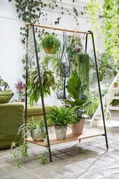These Brilliant Vertical Garden Ideas Will Leave You Green w .- These Brilliant Vertical Garden Ideas Will Leave You Green with Envy All plants in 1 place;