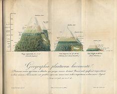 Geographica plantarum / APS Museum