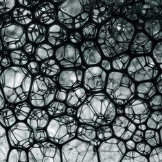 Liquids by Jakob Wagner, via Behance