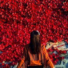  Spring   #turkey   @princessgdiaries    #travelwriter #travel #instatravel #travelgram #tourism #instago #passportready #travelblogger #wanderlust #ilovetravel #writetotravel#instatravelling #instavacation #travelblogger#instapassport#postcardsfromtheworld #traveldeeper