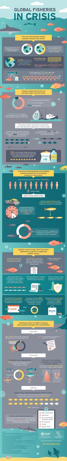 Why the Global Fisheries are in a Crisis Infrographic