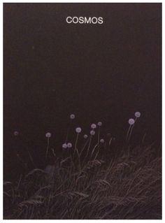 André Frère Éditions, 2015 Copertina rigida, 13.5 x 19 cm 56 pagine, fotografie…