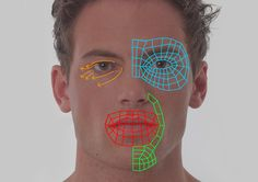 1804_tid_fig_01.jpg Another way of thinking about facial topology.
