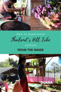 Here are few tips for a non-touristy way to experience authentic life in Northern Thailand. Karen People, Doi Inthanon National Park, Elephant Camp, Lampang, Elephant Sanctuary, Crop Rotation, Northern Thailand, Like A Local, Chiang Mai