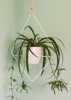 This white geometric planter is made front steel and hangs from a simple leather strap, while the shape of the planter frames the plant as an art piece.