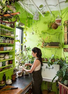 let's green it . Mention your friends who love plants ______________. House Plants Decor, Plant Decor, Feng Shui, Diy Bedroom Decor, Diy Home Decor, Decoration Plante, Paludarium, Houseplants, Indoor Plants