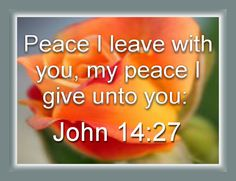 Bible Verses - John 14:27  Peace I leave with you, my peace I give unto you: not as the world giveth, give I unto you. Let not your heart be troubled, neither let it be afraid. - Bible Verses inspire us, enrich us, direct us and inform us.  Memorising Bible Verses is a worthwhile occupation.  The Enjoy these Bible Verses and become empowered.  These Bible Verses link to my various blogs.  I'm Dan a Bible Lover.  I enjoy reading Bible Verses