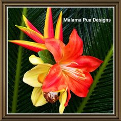 TROPICAL HAIR FLOWER Clip Bridal Silk Flower Hair by MalamaPua