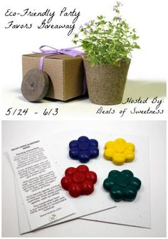 Eco-Friendly Party Favors Giveaway