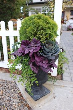 Fall Planters Ideas for Your Outdoor Greenery 30 Lovely Fall Planters Ideas for Your Outdoor Lovely Fall Planters Ideas for Your Outdoor Greenery We are going. Flower Pots, Plants, Fall Container Gardens, Flowers, Planters, Flower Tower, Outdoor Gardens, Fall Plants, Garden