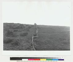 Fence offset just southeast of road from Colma to San Pedro Valley 1906