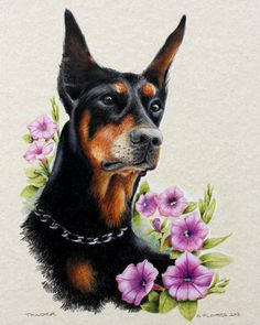 Thunder - In remembrance. Thunder was a very soft natured show dog who lived in Cheyenne and loved to sit in his garden.