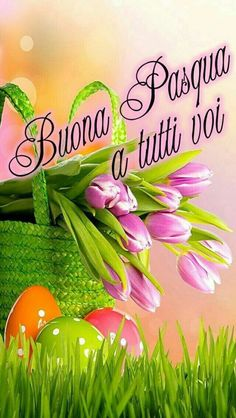 Here are beautiful Daily Wishes with good pictures of morning, afternoon and All of the daily wishes, quotes and greetings Easter Peeps, Happy Easter, New Month Greetings, Best Quotes Images, Page Borders Design, Greetings Images, Easter Story, About Easter, Easter Flowers