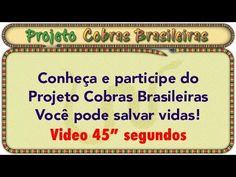 Apresentação Projeto COBRAS BRASILEIRAS video 640x360px