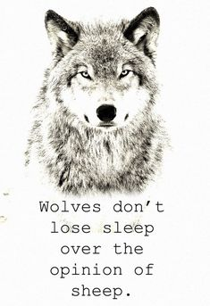 Wolves Just Don't Care