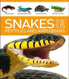 Nature Guide: Snakes And Other Reptiles And Amphibians PDF