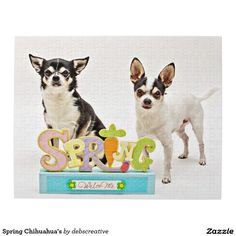 Spring Chihuahua's Puzzles