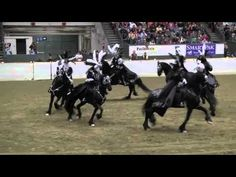"♥ glorious ~ Equine Affaire 2011 Fantasia, ""Behind the Mask"", Friesian Performance"