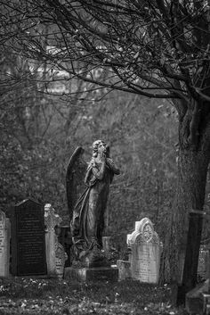 Church Rock Cemetery 19.11.14-19