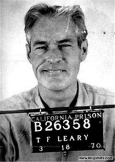 Image result for Timothy Leary at Millbrook