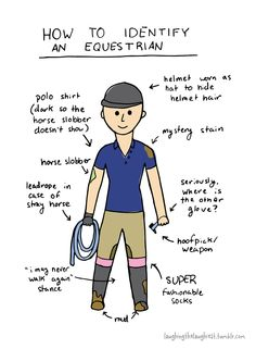 How to identify an equestrian!