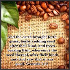 Gen. 1:12