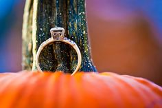 A pic showing off your engagement ring on a fall pumpkin! Photo by @lisamrhinehart