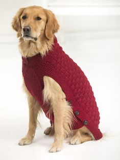 Clifford Dog Sweater pattern by Lion Brand Yarn Clifford-for large dog free on LionBrand Knitted Dog Sweater Pattern, Dog Coat Pattern, Knit Dog Sweater, Coat Patterns, Sweater Patterns, Large Dog Coats, Large Dog Sweaters, Pet Sweaters, Large Dog Clothes