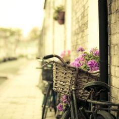 Cute bicycle basket.