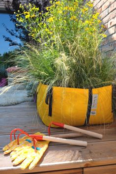 Urban gardeners will love filling their yards and decks with these colourful planter bags and filling their planter bags with flowers, herbs, grasses and even vegetables. Plant Bags, Garden Bags, Healthy Vegetables, Simple Bags, Growing Flowers, Grasses, Hanging Plants, Medium Bags, Innovation Design
