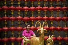 Chinese Mothers Not Keen On Births During Year Of The Sheep Because of Zodiac Superstitions
